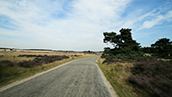 Mile National Park Hoge Veluwe