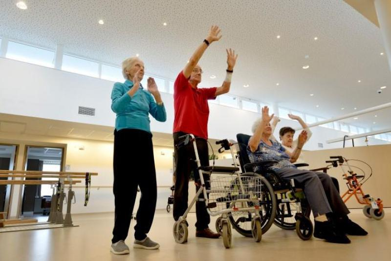Rehabilitation and physiotherapy with games for elderly - SilverFit